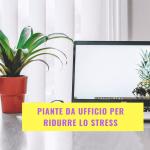 piante_ufficio_ridurre_stress
