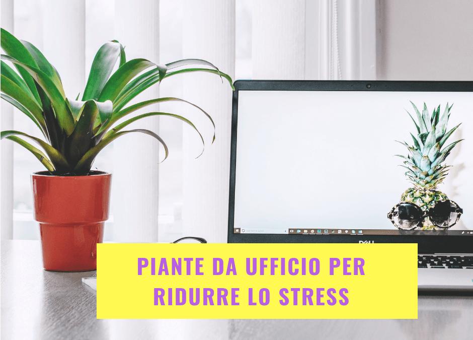 Piante da ufficio per ridurre lo stress